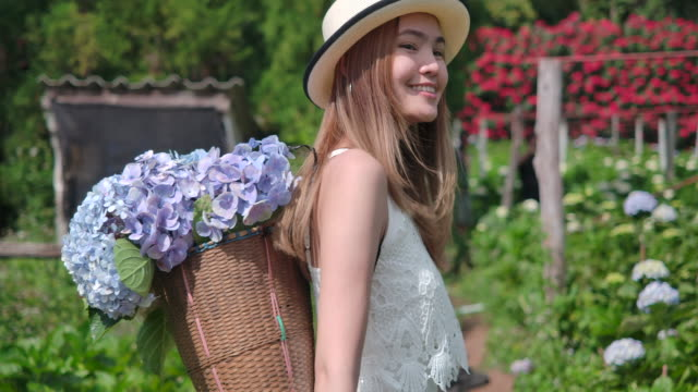 4K Slow motion Thai beautiful woman the tourist She traveled to the hydrangea field. Fresh air And she is happy