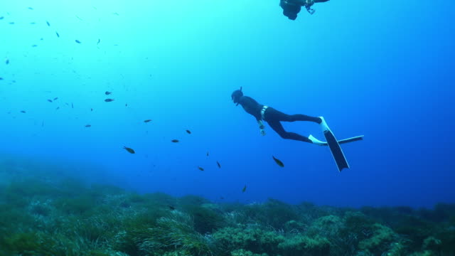 Slow motion underwater shot of a scuba diver swimming near fish and mossy rocks