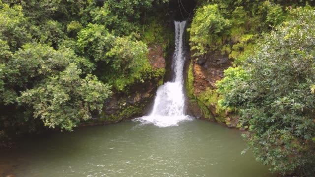 モーリシャスの美しい滝のスローモーションビデオ ビデオ