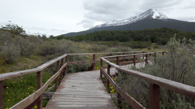 Slow motion video of a wooden path in Lapataia Bay - Tierra del Fuego, Patagonia, Argentina