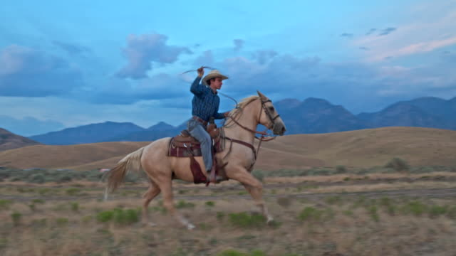 Slow motion video of cowboy on his horse with lasso on the range video