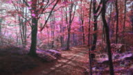 istock Slow motion video of sunlight over an surreal purple forest 1279012714