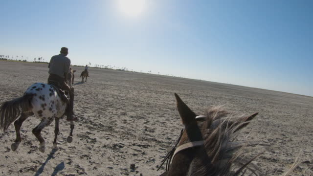 Slow motion view of a group of horse riders on safari cantering across the wide open spaces of the Makgadikgadi salt Pans Slow motion view of a group of horse riders on safari cantering across the wide open spaces of the Makgadikgadi salt Pans botswana stock videos & royalty-free footage