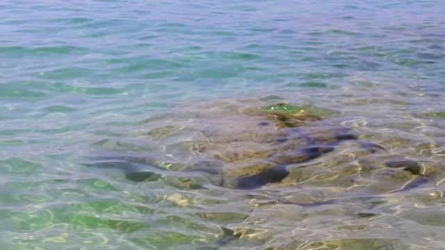 來自海洋的高清慢運動波通過水下的岩石。 - 氧氣筒 個影片檔及 b 捲影像