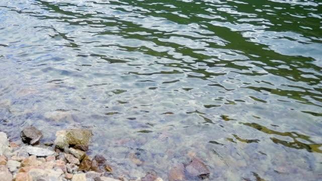slow motion waves ripple and break on a rocky shoreline - ekoturystyka filmów i materiałów b-roll