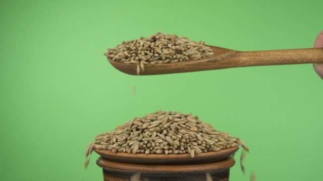 vidéos et rushes de les ralentis. les grains de seigle dorment suffisamment d'une cuillère en bois sur un tas de graines dans un bol d'argile. - seigle grain