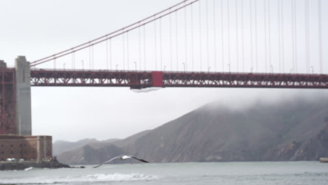Slow Pan of Giant San Francisco Golden Gate Bridge San Francisco, California - Golden Gate Bridge, Slow Pan suspension bridge stock videos & royalty-free footage