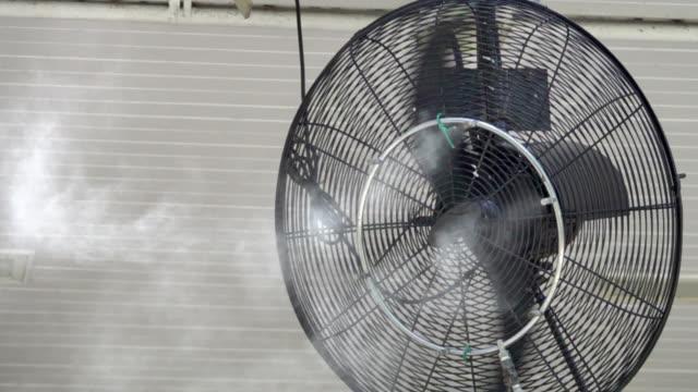 slow: steam fan video