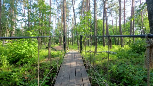 Slow walking over rope bridge in the forest