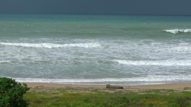 slowmotion of ocean wave rolling towards sand beach with green trees island - юго восток стоковые видео и кадры b-roll