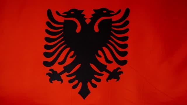 Slowmotion real textile Flag of Albania video