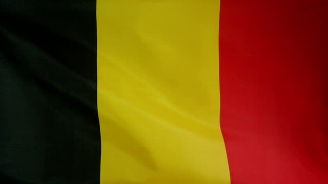 Slowmotion real textile Flag of Belgium video