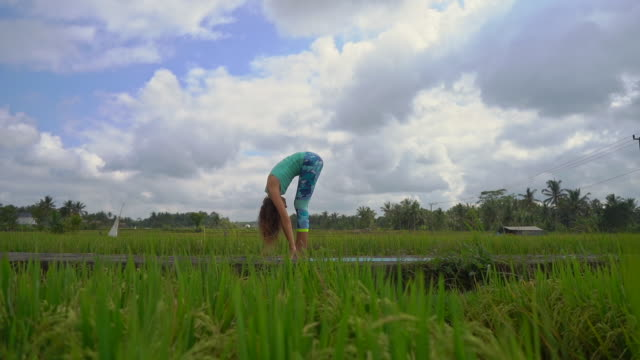 slowmotion steadicam shot of a young woman practicing yoga on a beautiful rice field - mudra video stock e b–roll