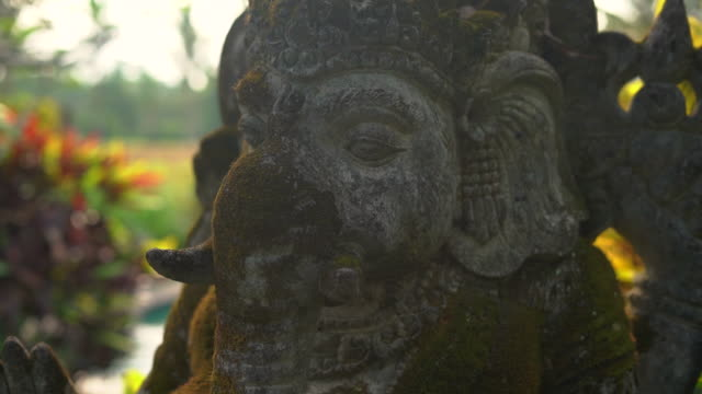 Slowmotion steadicam shot of the stone statue of Ganesha god covered with moss in a tropical garden