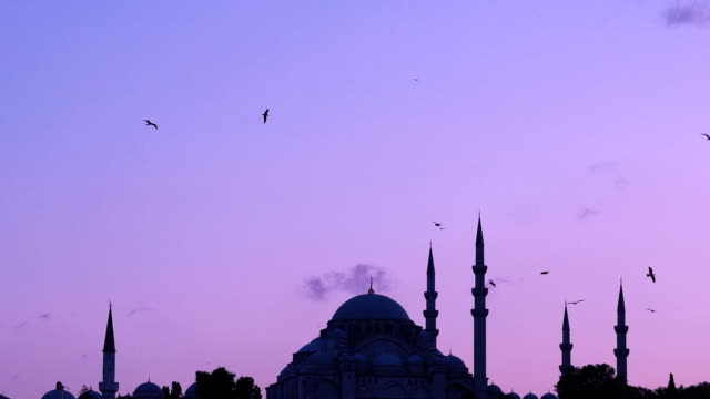 Slowmotion view of Suleymaniye mosque with seagulls flying around on sunset from Bosphorus in Istanbul Turkey video
