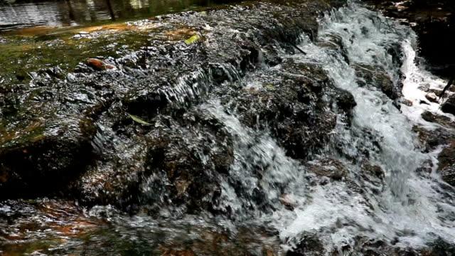 zeitlupe, wasser fließt im fluss - wassersparen stock-videos und b-roll-filmmaterial