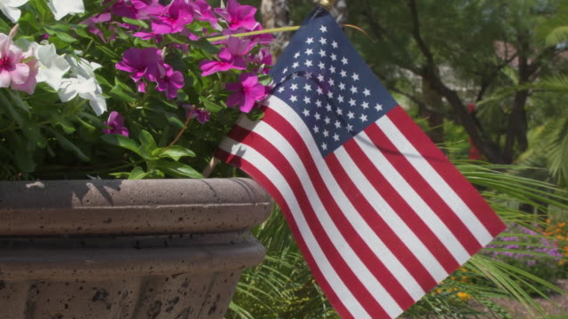 Small American Flag in a Planter A small American flag adorns a front yard planter and flaps in the breeze showing the homeowner's patriotism and love of country. independence day stock videos & royalty-free footage