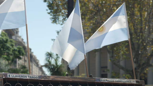 small argentinean flags waving close up - bandiera dell'argentina video stock e b–roll