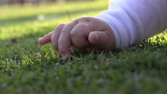 stockvideo's en b-roll-footage met kleine baby hand aanraken gras gazon close-up - background baby