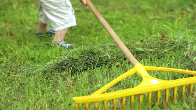 Small boy raking grass in the garden. video