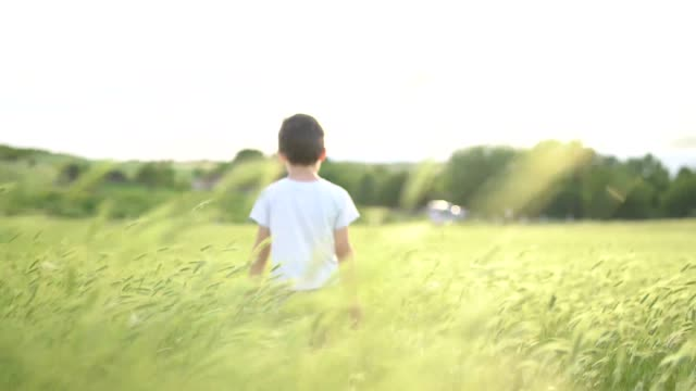 Small boy walking in grass field waving his hands
