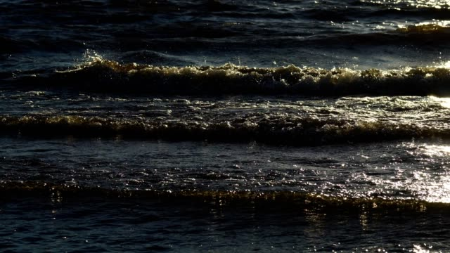 Small bubbling waves of water move along the surface of the bay of the sea. Water shines and takes a yellowish shade due to the setting sun. Sunny summer evening. video