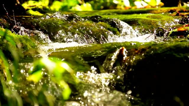 slo mo небольшими водопадами - ручей стоковые видео и кадры b-roll