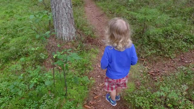A small child walking on a footpath in a forest with lots of pines and spruces.
