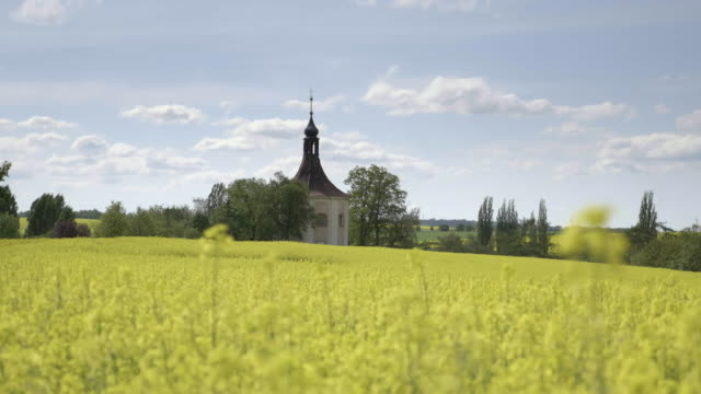 Small church, baroque chapel with belfry at field with oilseed rape video