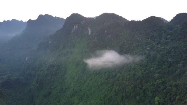 litet moln hängningar blandskog av kickberg spänner - bergsrygg bildbanksvideor och videomaterial från bakom kulisserna