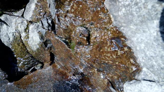 冰川水小溪流過石頭 - 亞洲中部 個影片檔及 b 捲影像