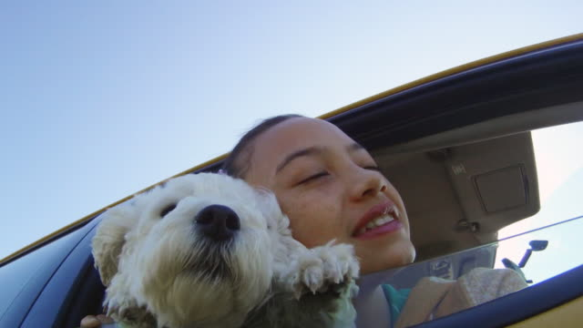 piccolo cane e ragazza appoggiarsi out auto finestra - preadolescente video stock e b–roll