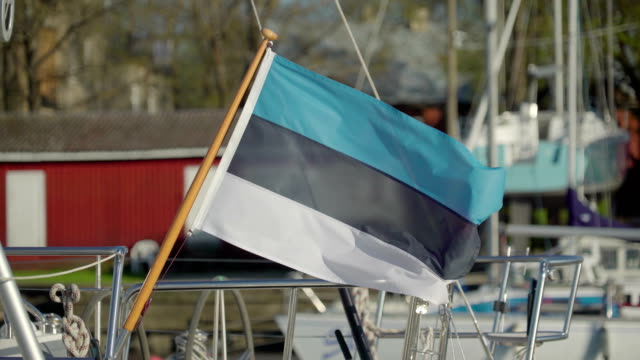 A small Estonia flag waving so fast of the wind video
