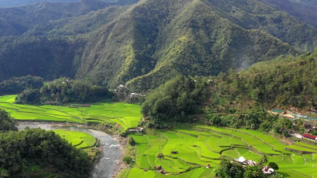 Small farm near a stream in the middle of rice terraces in Philippines. Wonderful agriculture in a valley near mountains in a beautiful day - Aerial view with a drone 4K Banaue's rice terraces with a stream and small farm in nature. One of the most beautiful agriculture in Philippines, with the most wonderful view.  Perfect landscape in an amazing place, with the respect of environment banaue stock videos & royalty-free footage