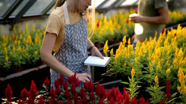 スモールガーデンビジネス - 花市場点の映像素材/bロール