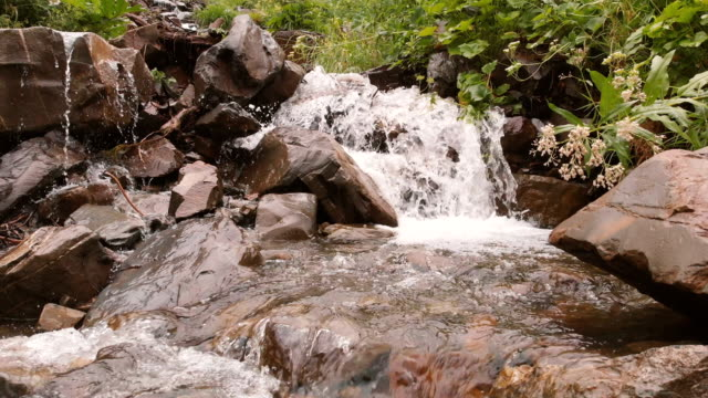 Small mountain river in the real time