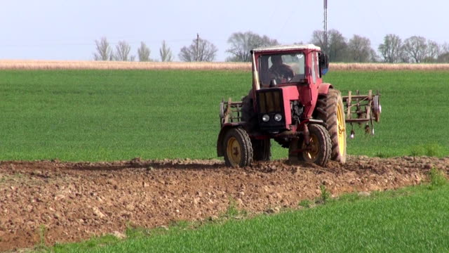 small old tractor cultivated field in spring video