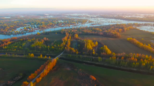 Small Pieces pf Land and Trees Growing in Pripyat River. Belarus. Small Pieces pf Land and Trees Growing in Pripyat River. Belarus.Aerial drone shot. 4K 30fps ProRes chlorine stock videos & royalty-free footage