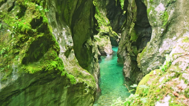 LS Small river canyon in Slovenia