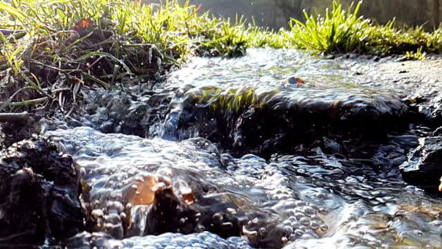 small river in super slow motion close-up with short focus - campionato video stock e b–roll
