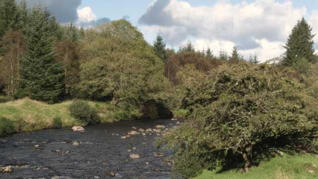 Small Scottish river 4k footage shot at 50fps and interpreted at 25fps to give slower motion galloway scotland stock videos & royalty-free footage