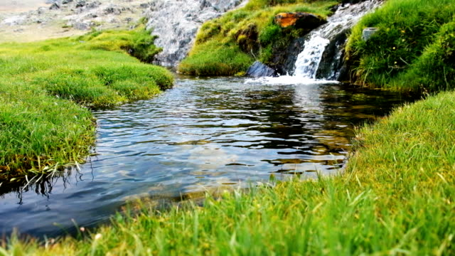 small stream in altai - spring stock videos & royalty-free footage
