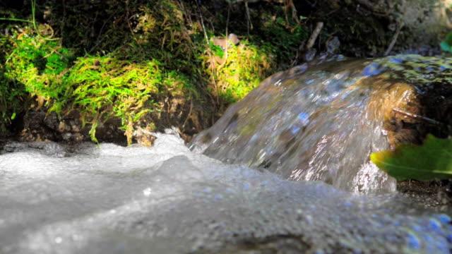 スローモーションフォーム付きの小さなストリームウォータージャンプ - 湧水点の映像素材/bロール