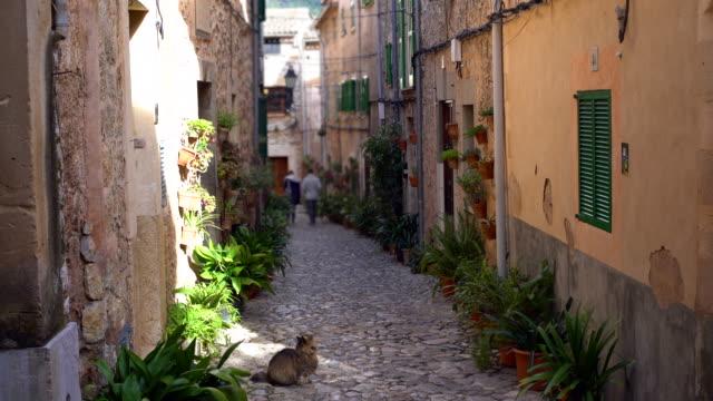 ヴァルデモサの小さな通りと猫 - ヴァルデモサ点の映像素材/bロール