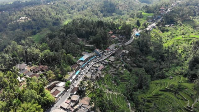 Small town next to rice terraces aerial of small town located next to Ubud rice terraces in Bali, Indonesia indonesia stock videos & royalty-free footage