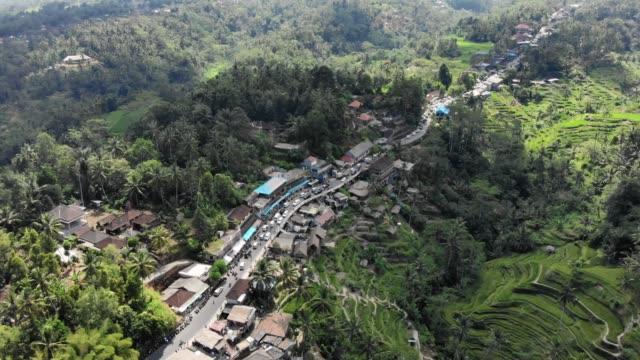 vidéos et rushes de petite ville à côté de rizières en terrasses - indonésie