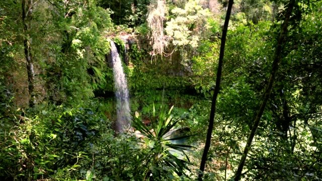 オレンジ山国立公園内の小さな滝 - 各国の観光地点の映像素材/bロール