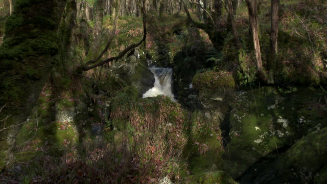 Small waterfall in rural Dumfries and Galloway south west Scotland 4k footage shot at 50fps and interpreted at 25fps to give slower motion dumfries and galloway stock videos & royalty-free footage