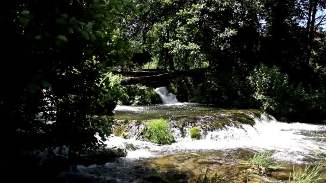 Small waterfall with strong vegetation video