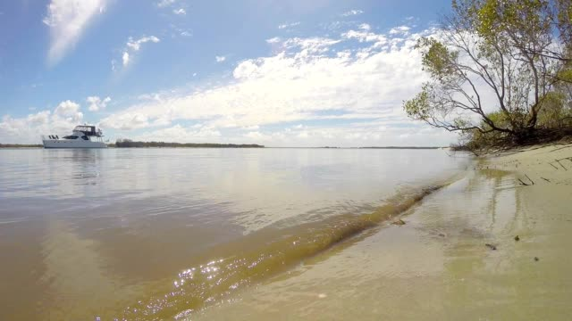 Small Waves Washing Ashore on South East Queensland Australia Pristine Idyllic Island video